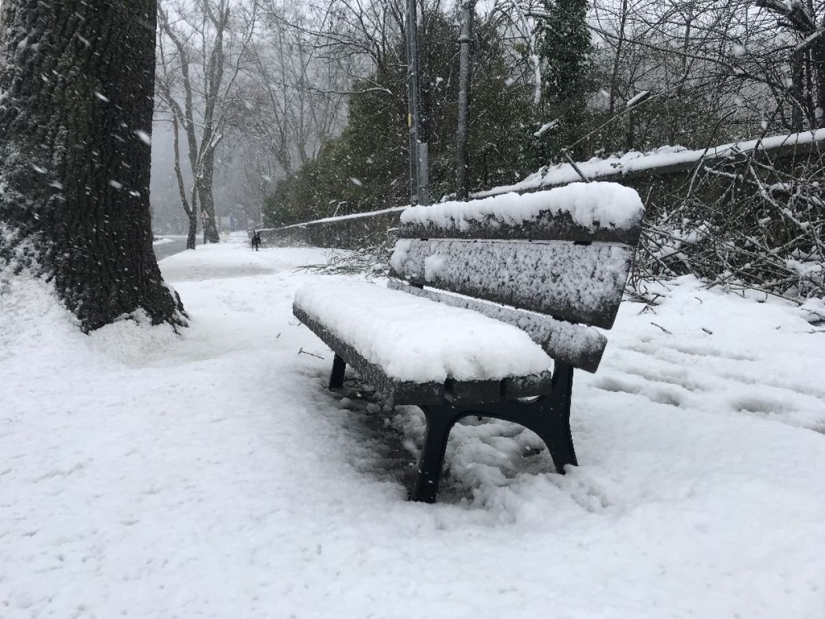 Beykoz'da kar kalınlığı 20 santimi buldu #6