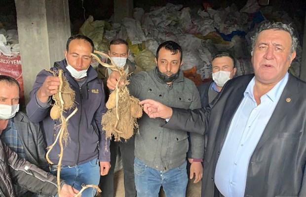 erdogan-her-karis-topragi-ekin-demisti-patates-depoda-curume-asamasinda-847066-1.