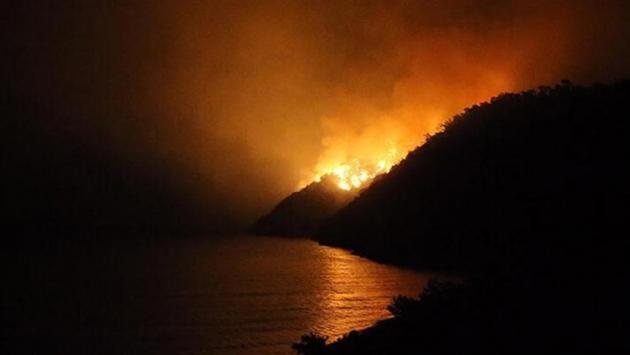 RTÜK'ten altı kanala 'orman yangını' cezası